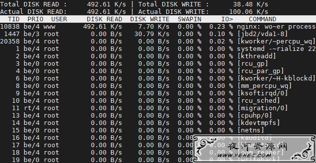 Linux系统使用iotop命令测试磁盘当前读写速度