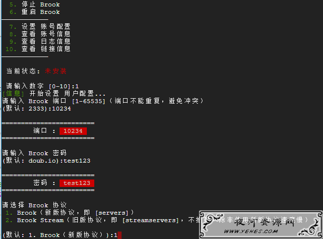 最新 LinuxVPS一键搭建Brook教程