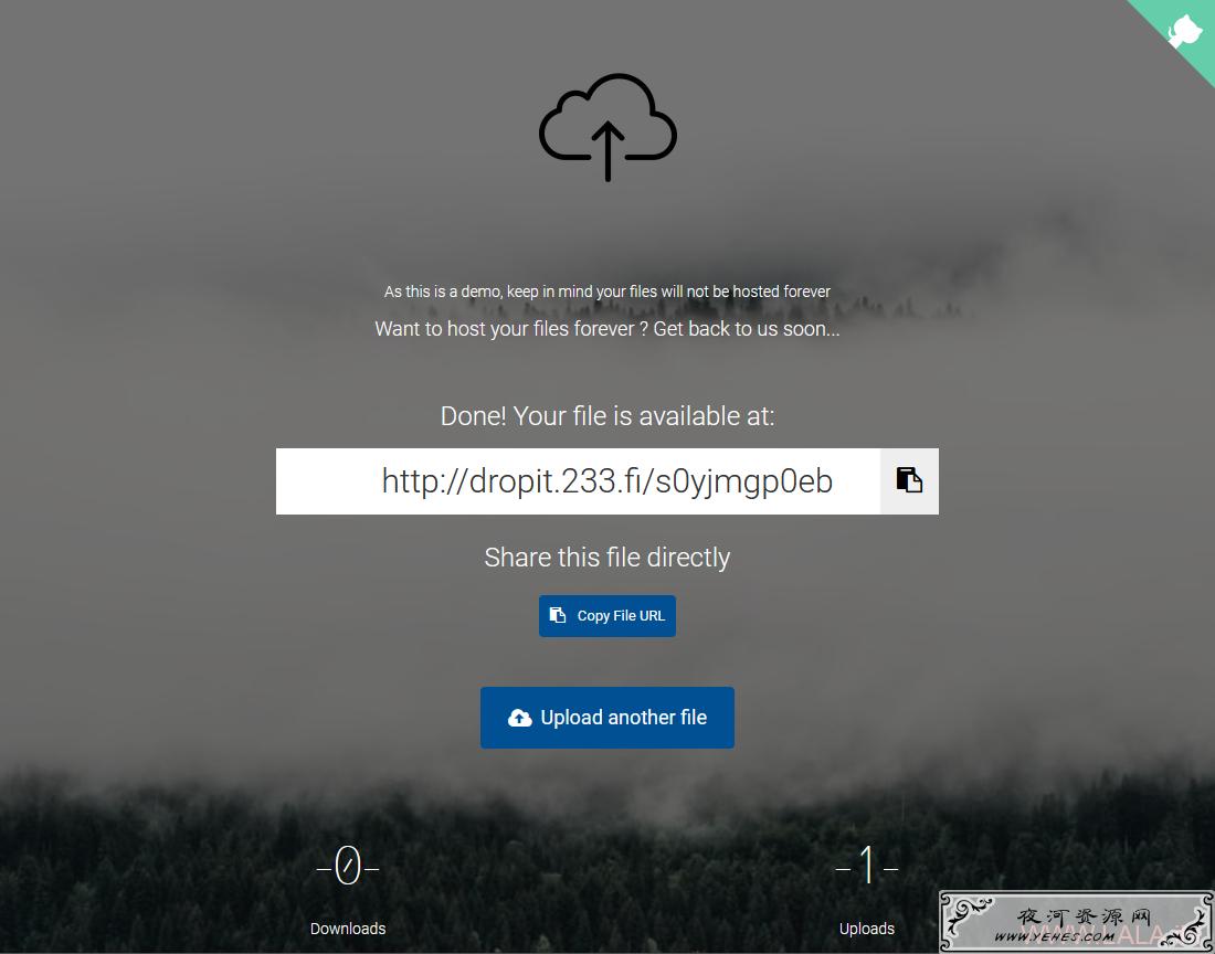 Dropit:一个简洁的文件上传工具