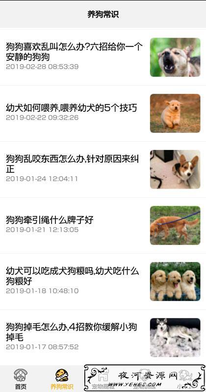 安卓狗语翻译器1.05