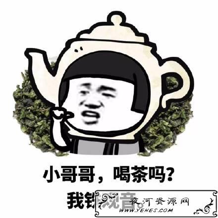 """""""网恋吗我铁观音""""是什么意思?"""
