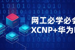网络工程师必学必会课程XCNP+HCIP